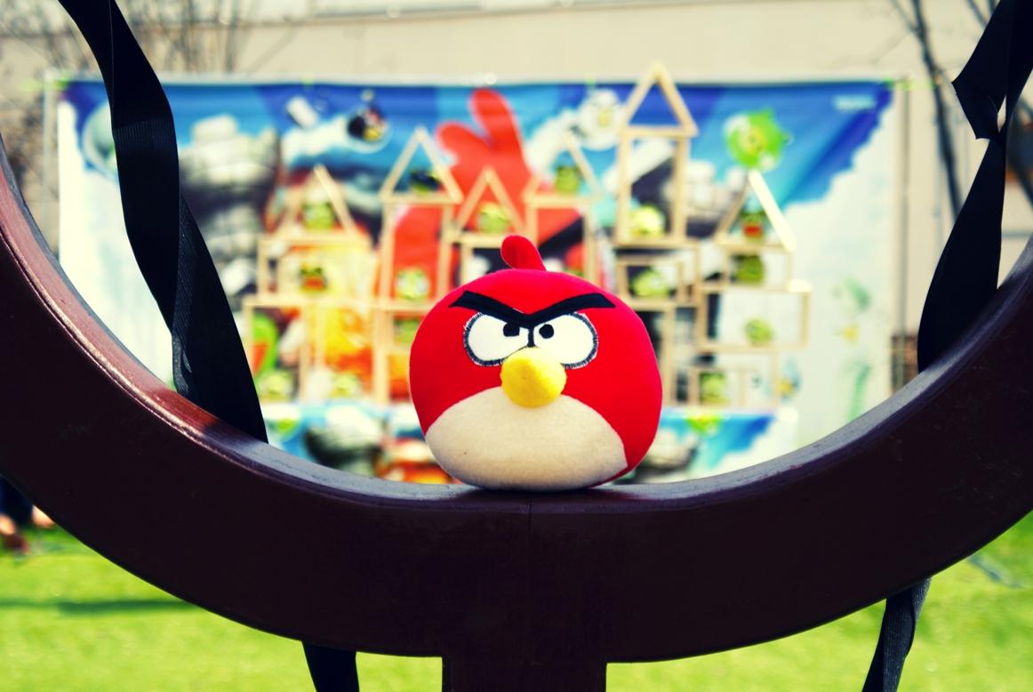 Angry Birds аренда